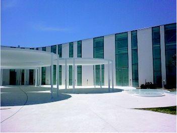Myrtus Puzol