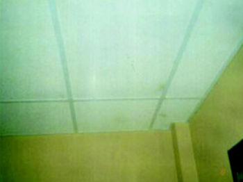 Foto 10 de Desinfección, desinsectación y desratización en Mérida | Fumigaciones J.M.S.