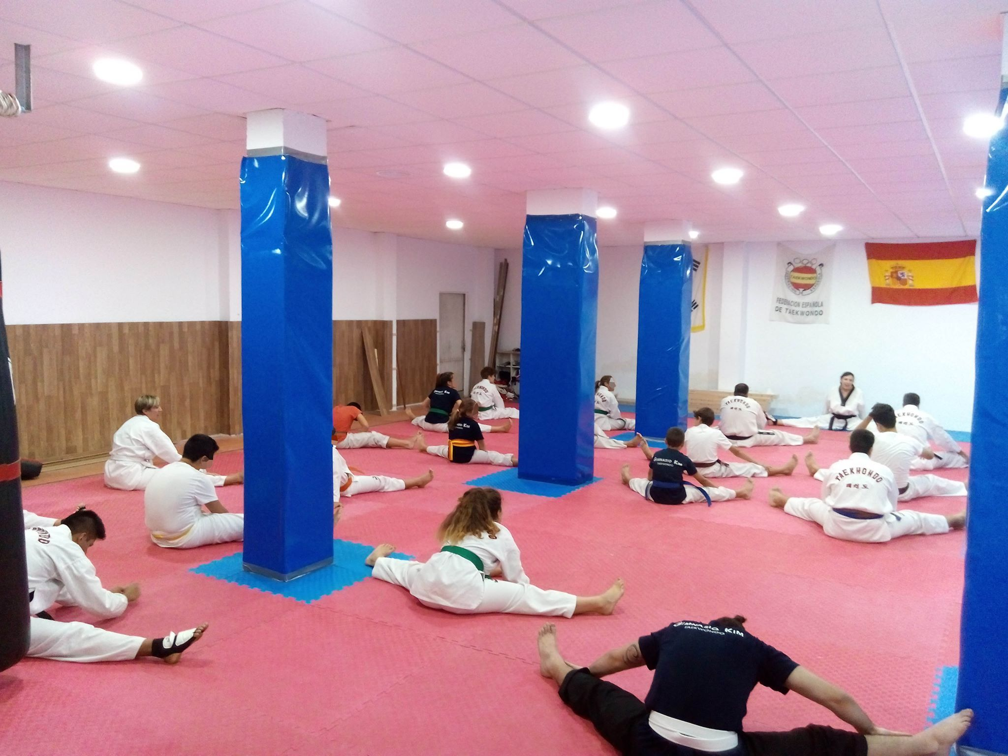 Clases de Taekwondo en Almería