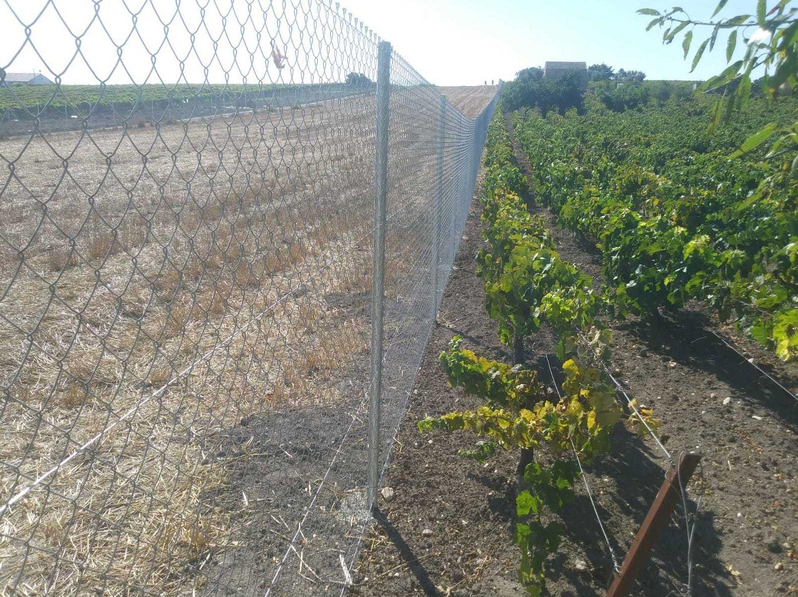 Alambradas para terrenos agrícolas