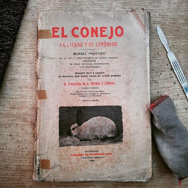 Restauración y conservación de libros en Oviedo