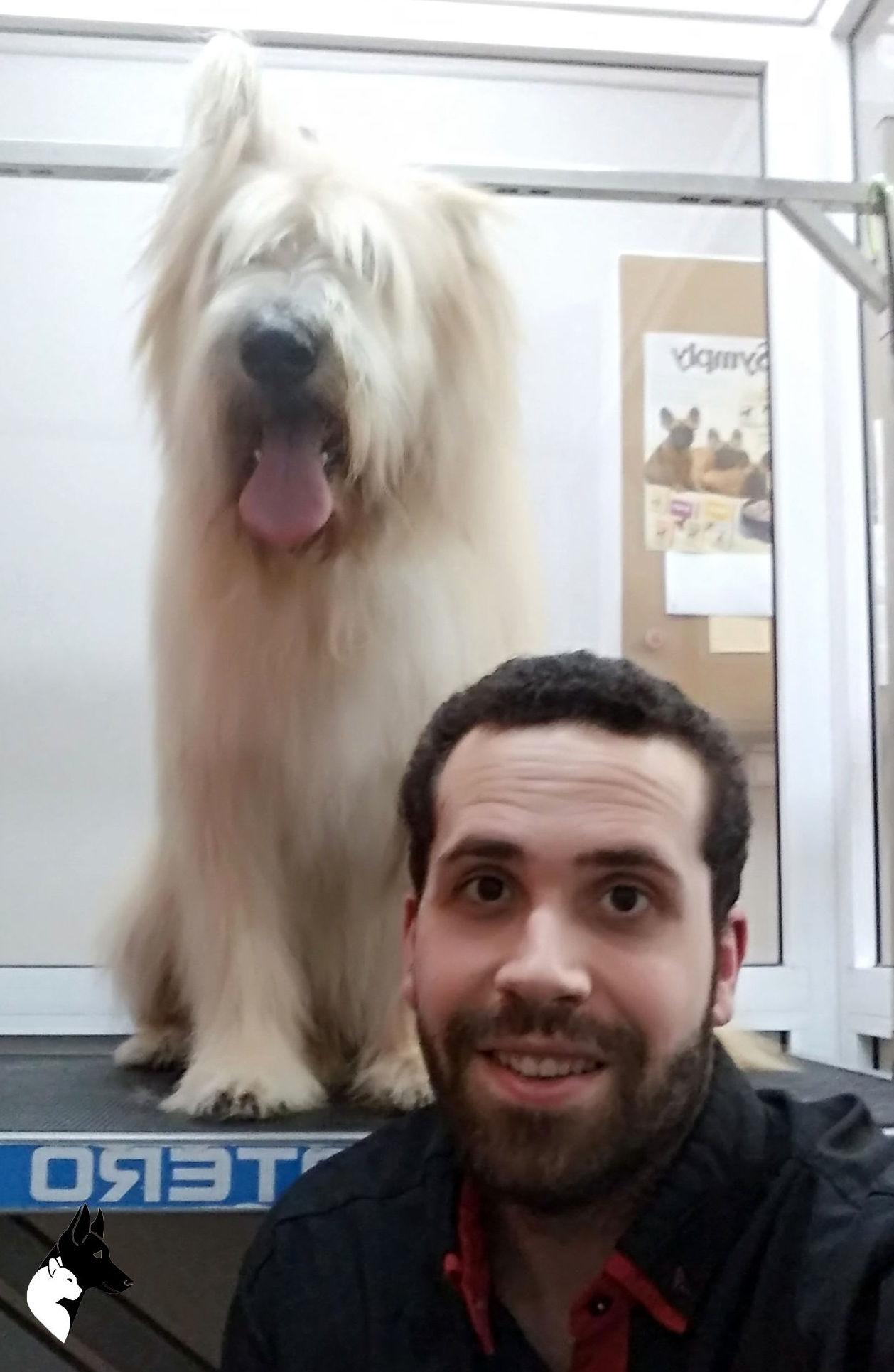 peluquería canina sants barcelona
