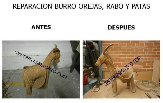 REPARACION BURRO