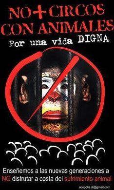 Alcázar, declarado también municipio libre de circos con animales salvajes
