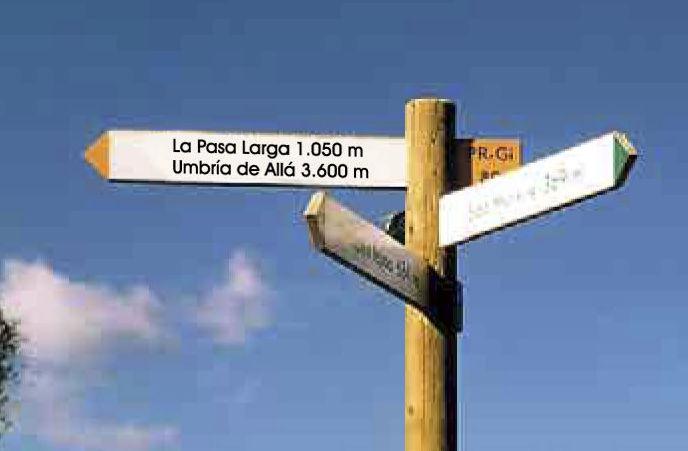 Flecha Pino Soria