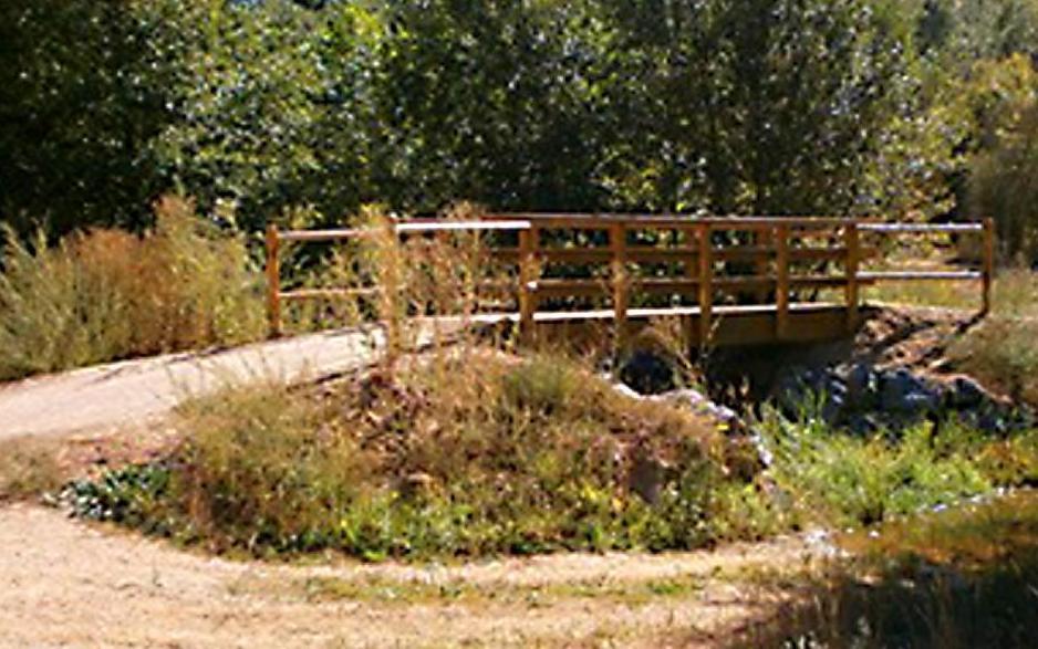 Puente madera pino Soria