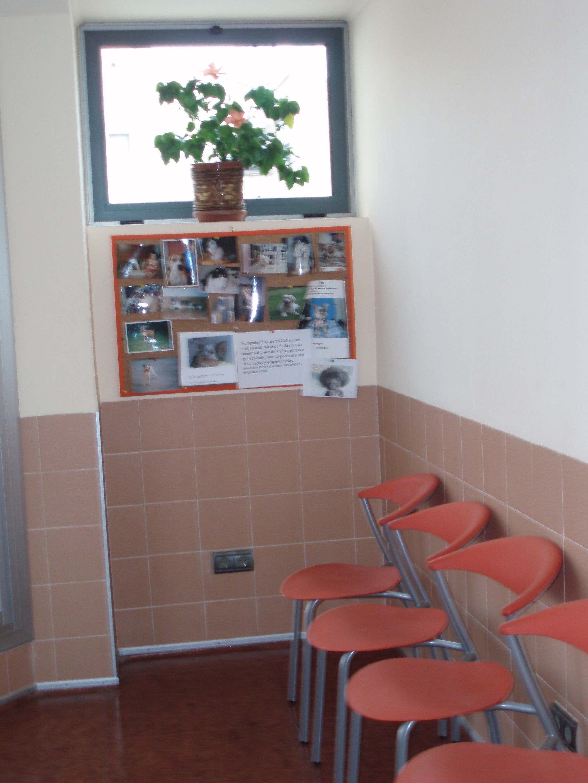 Sala de espera II