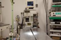 Hospitalización: Servicios de Arca Hospital Veterinario