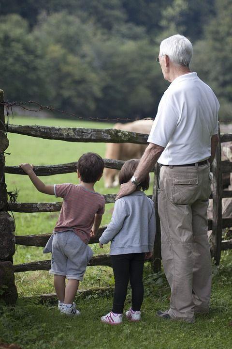 Visitas para abuelos: Servicios de Vives Luzón Abogados