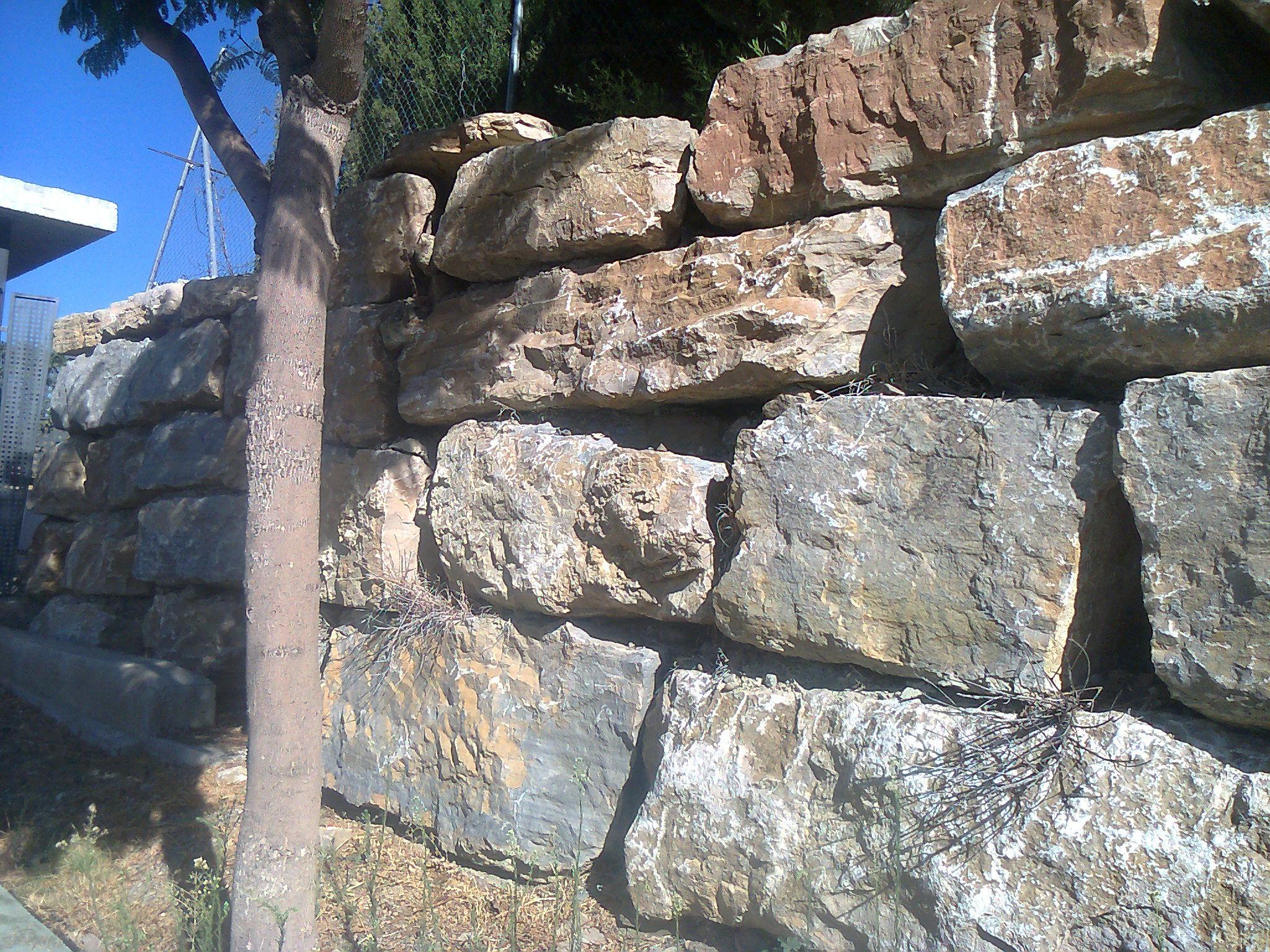 Foto 2 de Excavaciones en San Pedro de Alcántara | Excavaciones García Holgado, S.L.