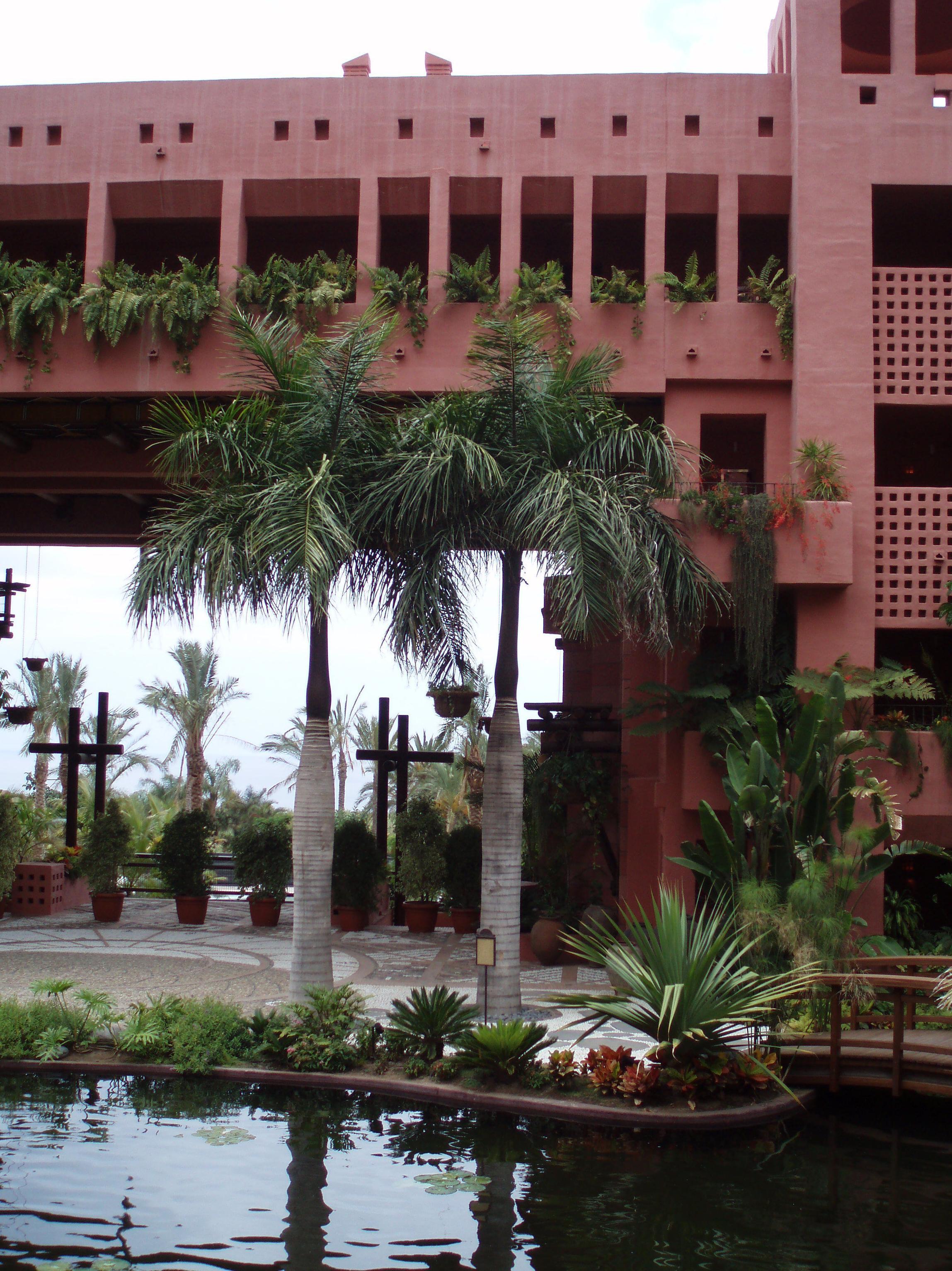 Creación de jardines interiores
