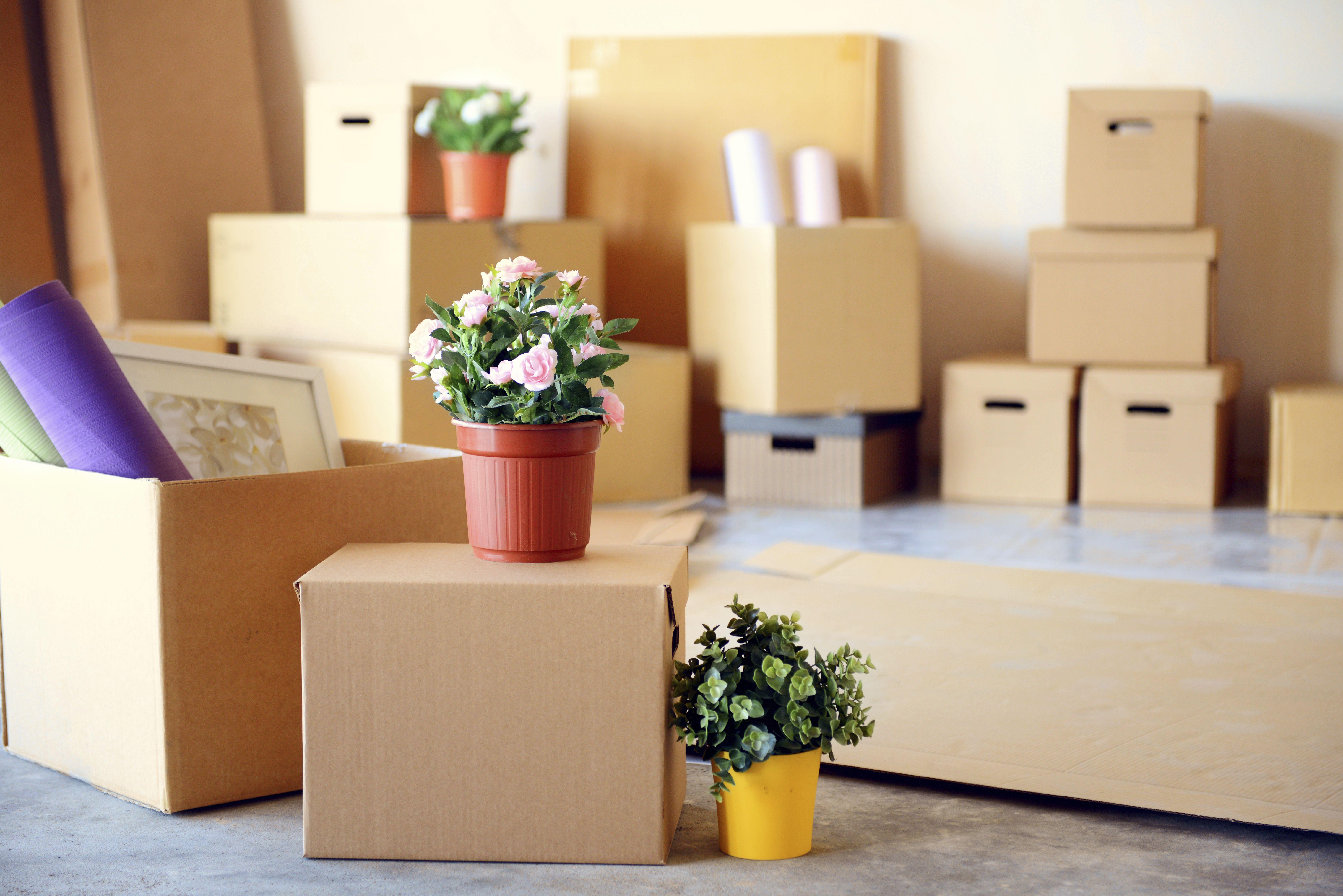 Mudanzas para el hogar: Servicios de Euro Mudanzas