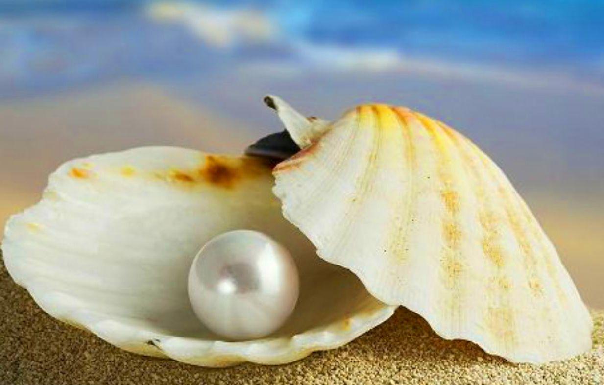 Exfoliante de gelatina de perlas y yogurt con oligoelementos: Tratamientos y Productos  de Yanira Díaz Estética Avanzada