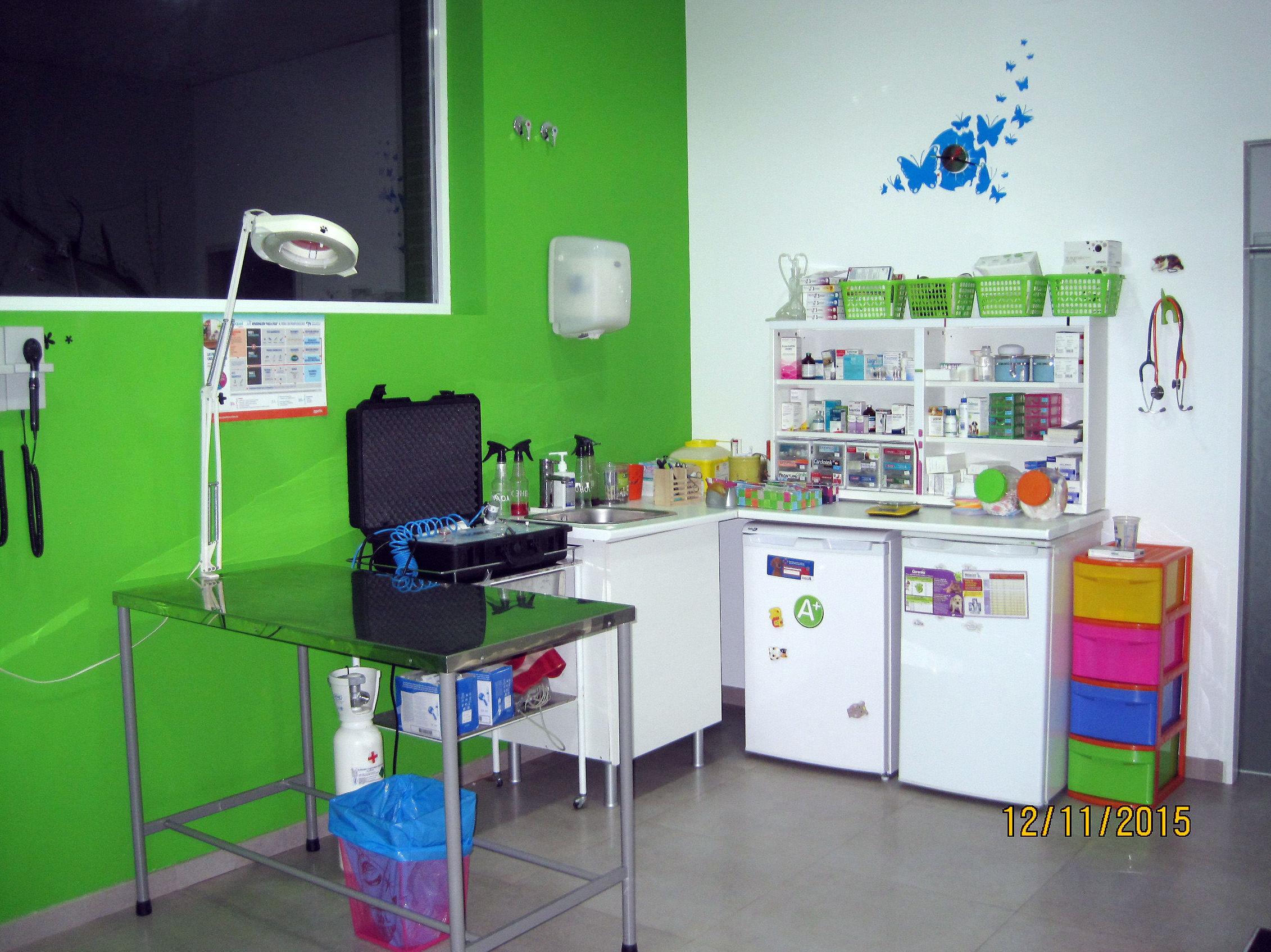 Consulta veterinaria en Valdemoro