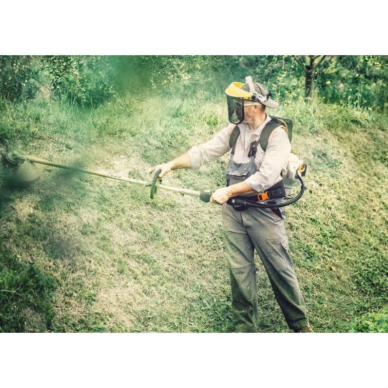 Selvicultura preventiva: Trabajos forestales de Moixent Forestal