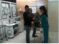 Revisión en el Centro Veterinario Don Can