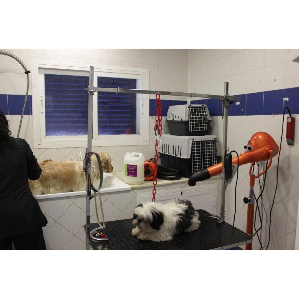 Peluquería canina y felina: Servicios de Clínica Veterinaria Fábula