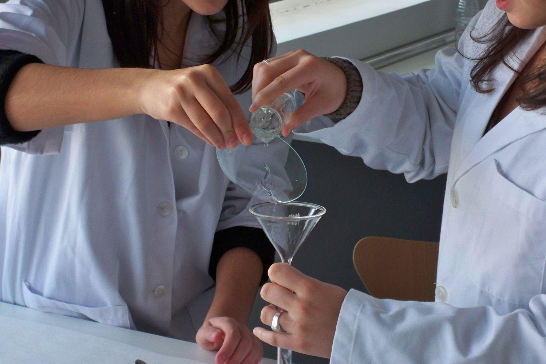 Formación profesional de farmacia