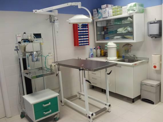 Medicina interna en Clínica Veterinaria Camarma