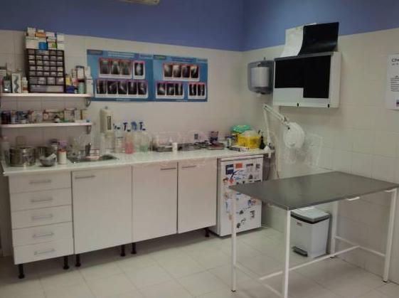 Consultas: Tratamientos y servicios de Clínica Veterinaria Camarma
