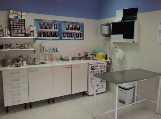 consulta veterinaria  en Camarma de Esteruelas