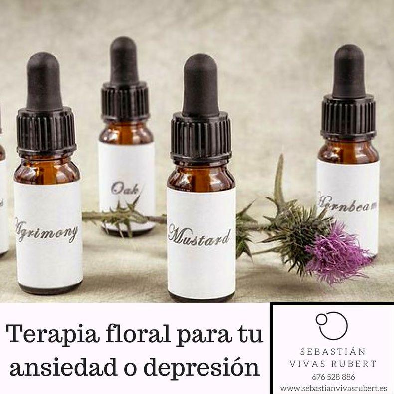 Terapia Floral - Sebastián Vivas Rubert - Experto en tratamiento de la autoestima - Sant Gervasi, Barcelona