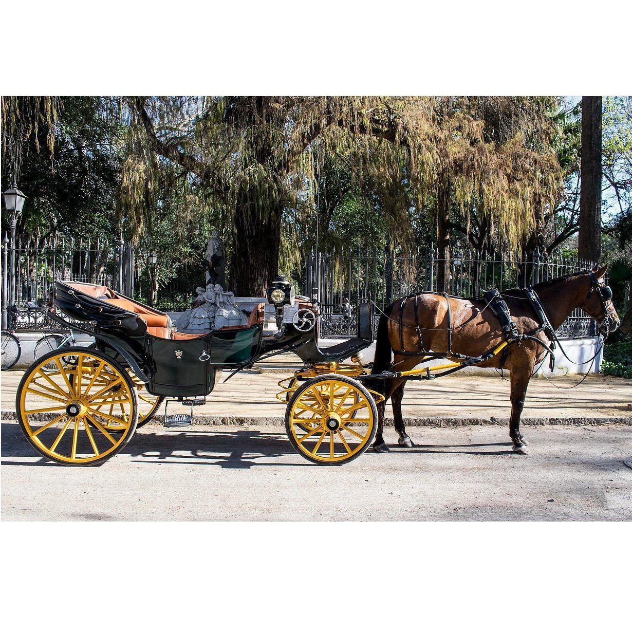 Paseos románticos por Sevilla en coche de caballos : Servicios que prestamos de JV Tours Sevilla