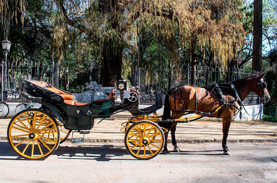 JV Tours en coche de caballos en Sevilla