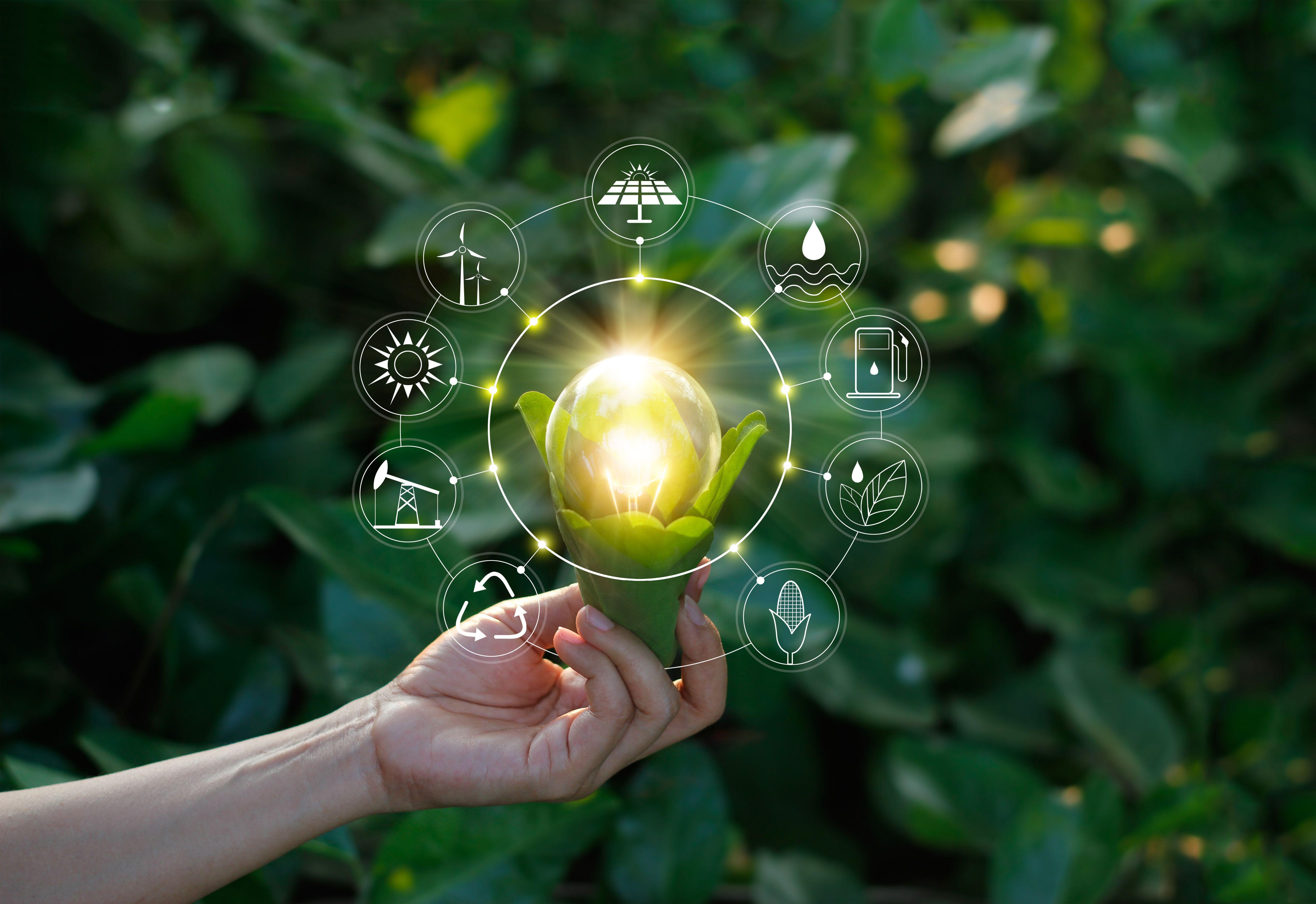 Compañia de energía renovable en Alicante