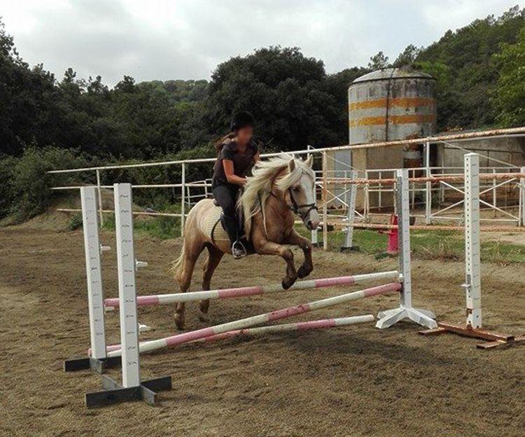 Clases de equitación a medida en El Maresme