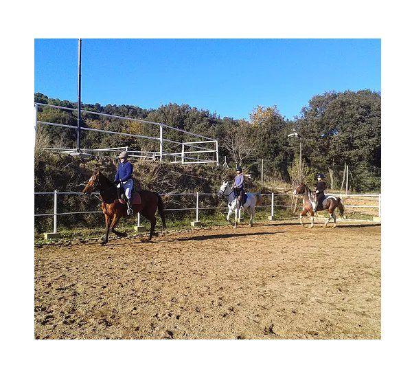 Clases de equitación: Servicios de Hípica D'Òrrius
