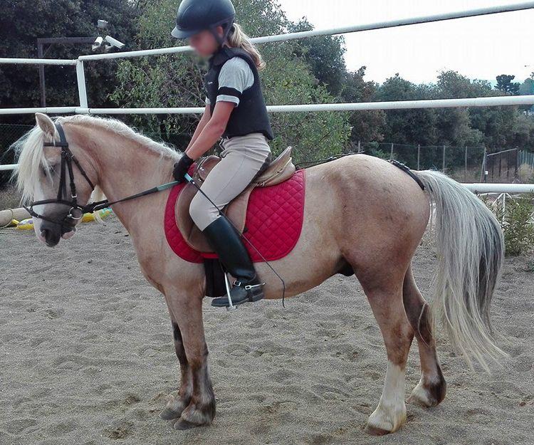 Clases de equitación para niños en El Maresme