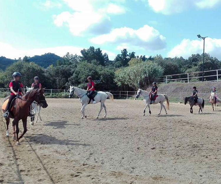 Rutas a caballo en El Maresme