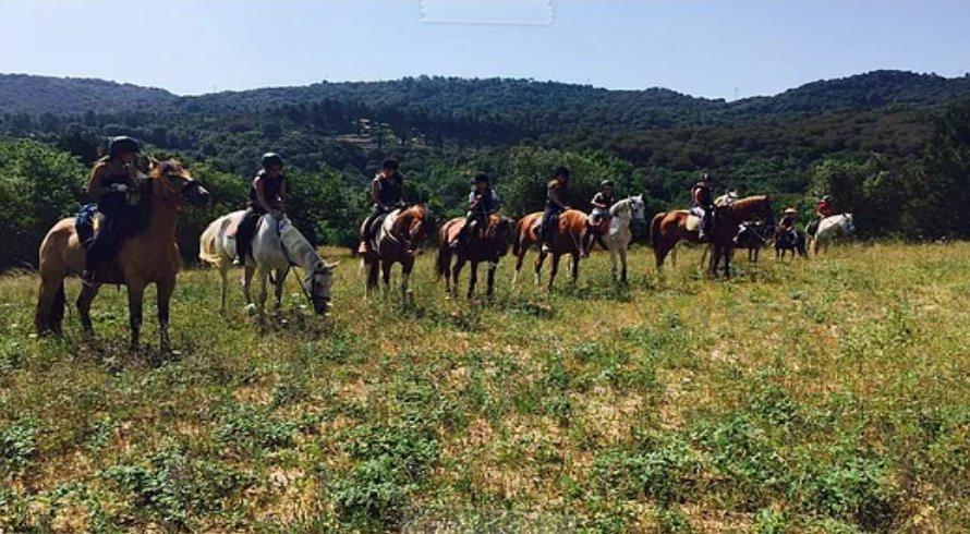Excursiones a caballo: Servicios de Hípica D'Òrrius