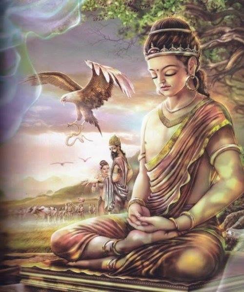 Meditación: TERAPIAS COMPLEMENTARIAS. de Fusikaruna Reiki