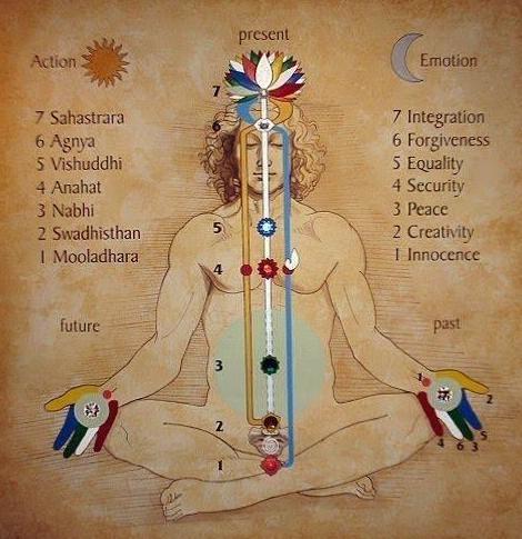 Los chakras principales.