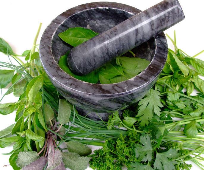 Plantas medicinales : Productos y servicios de Herbolario El Loto Dorado