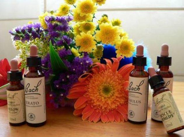 Flores de Bach : Productos y servicios de Herbolario El Loto Dorado