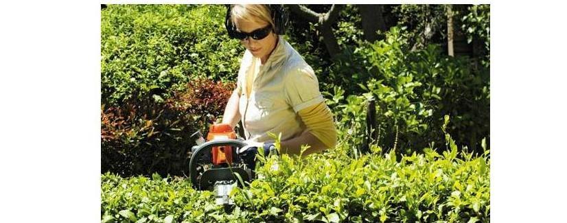 Mantenimiento de jardines Zamora