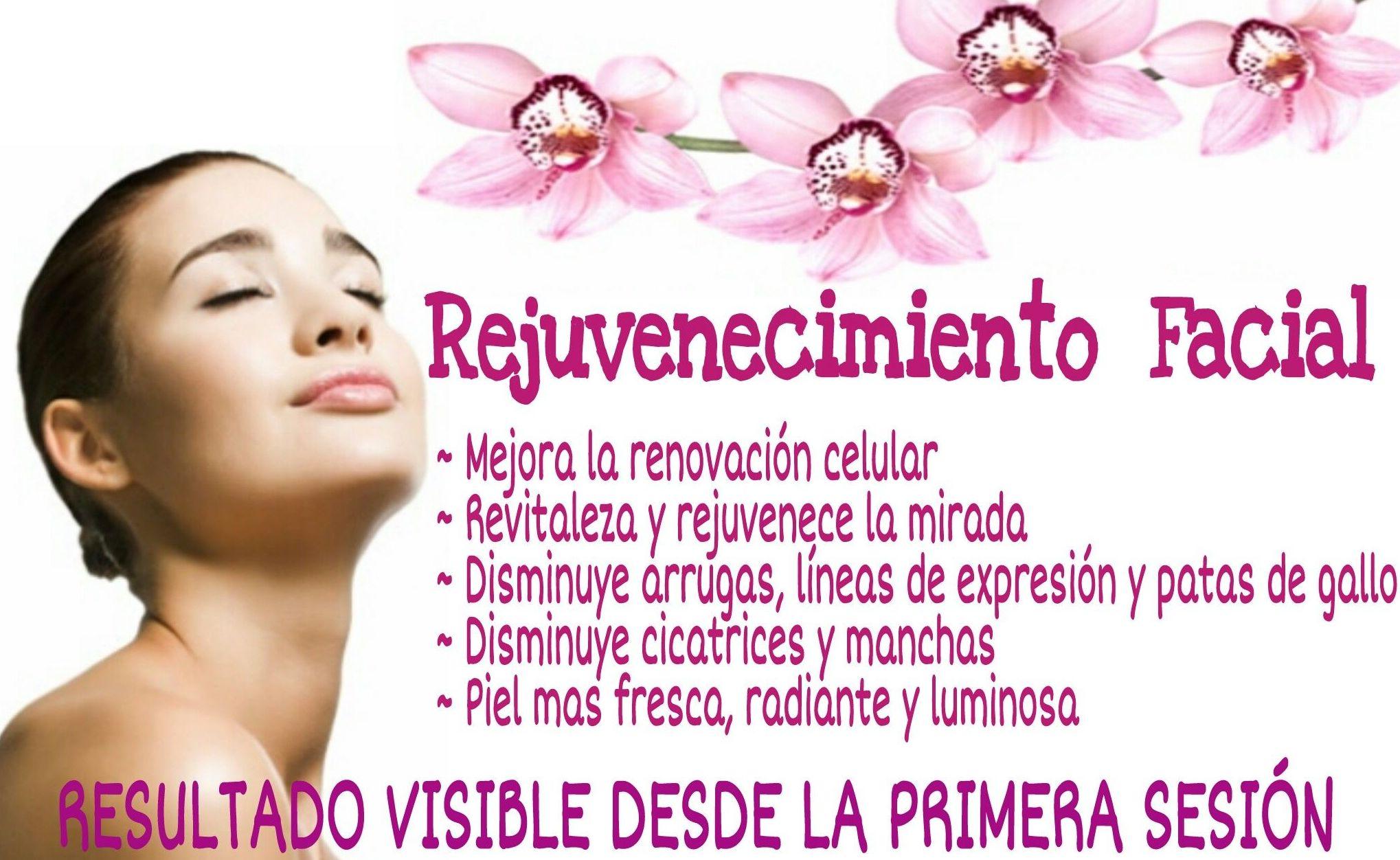 Tratamientos faciales  : Servicios de Alejandra Estética y Belleza