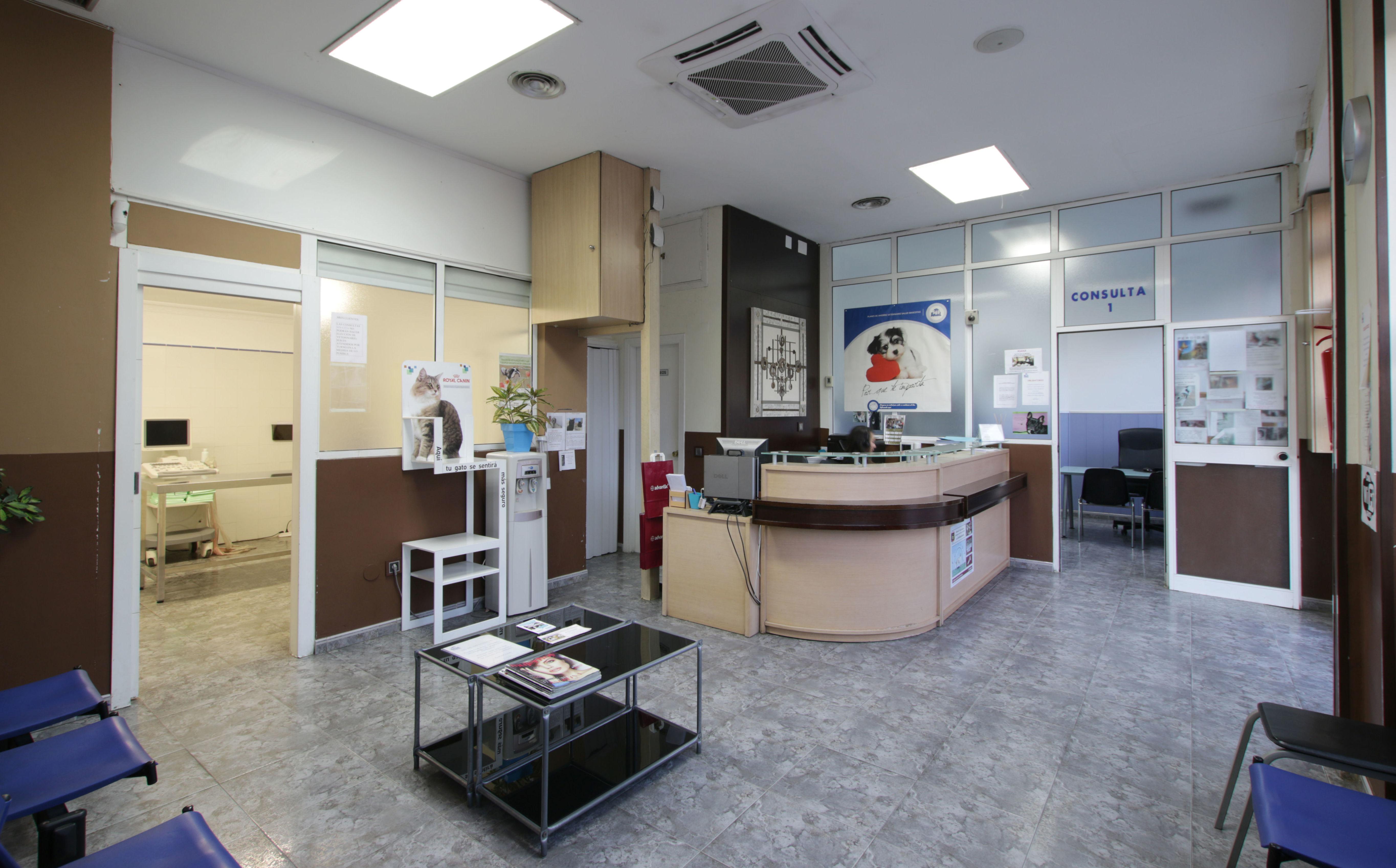Sala de Recepción