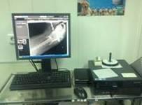 Radiología: Servicios de SOS Animal Catycan
