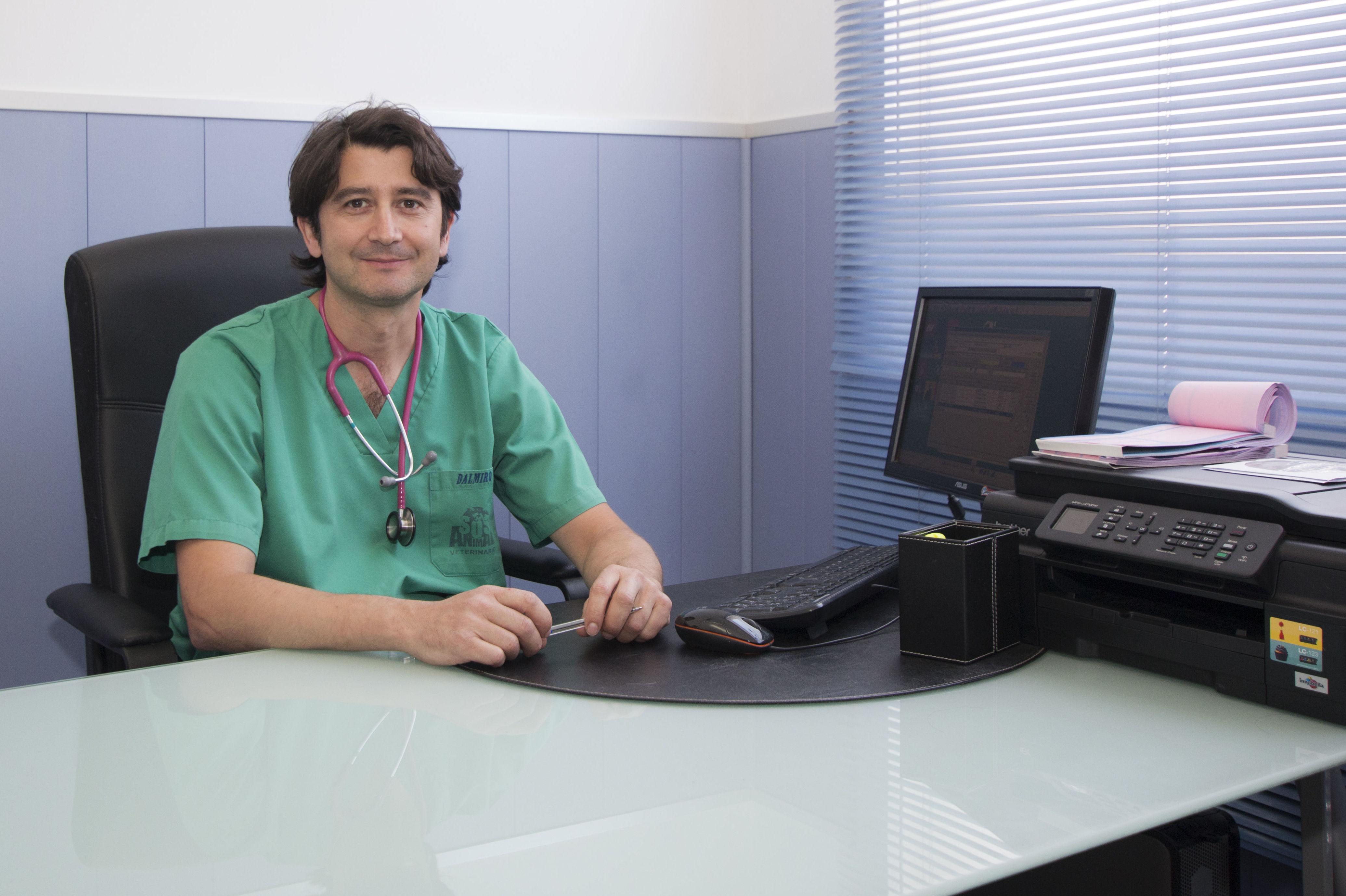 Consulta D.Dalmiro Garcia