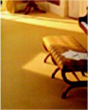 Foto 1 de Parquets y revestimientos de suelo en Cuarte de Huerva | Tenadi, S.L.