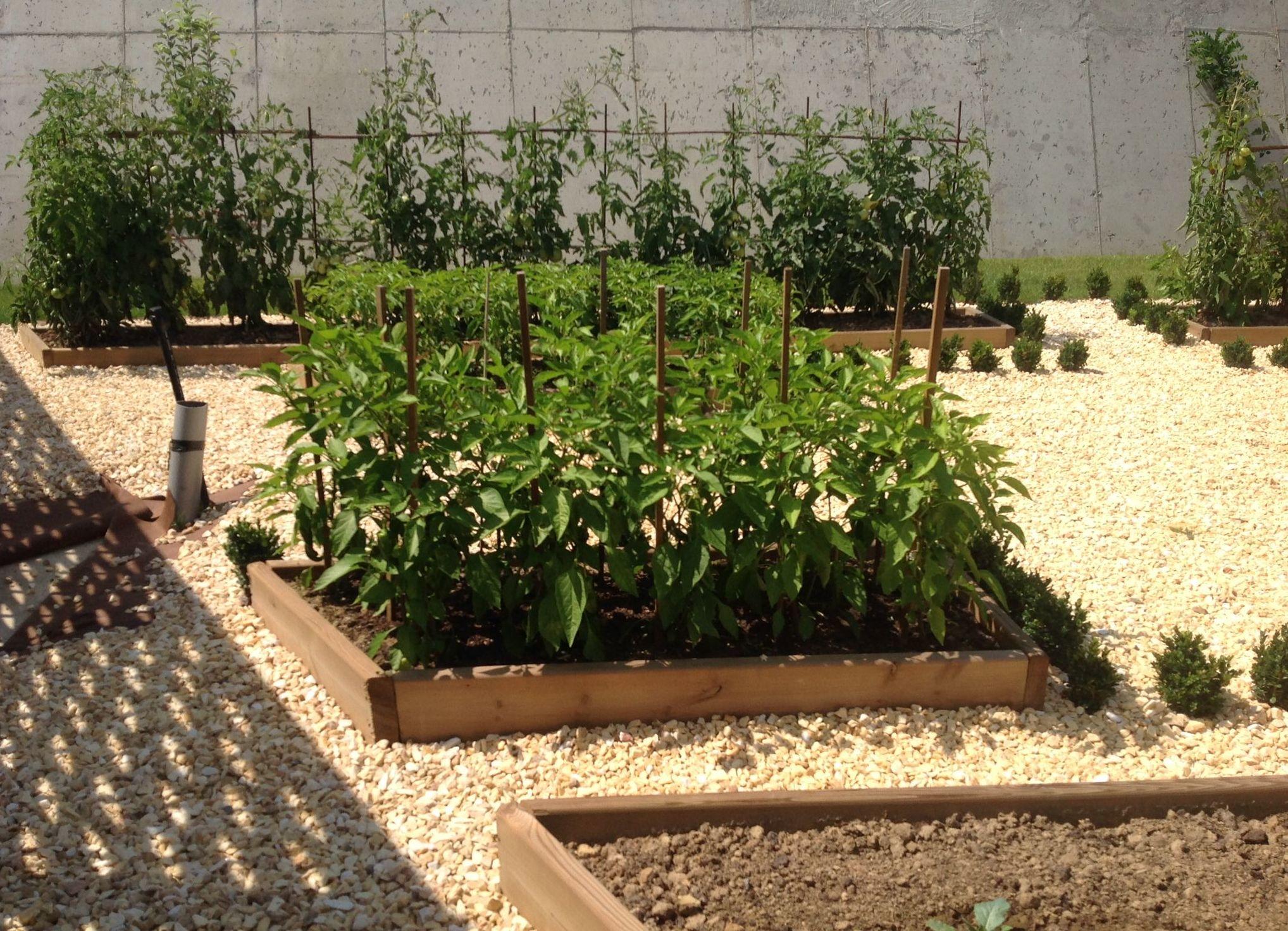 Foto 24 de Jardines (diseño y mantenimiento) en Durango | Jardines Patxi Lorategiak