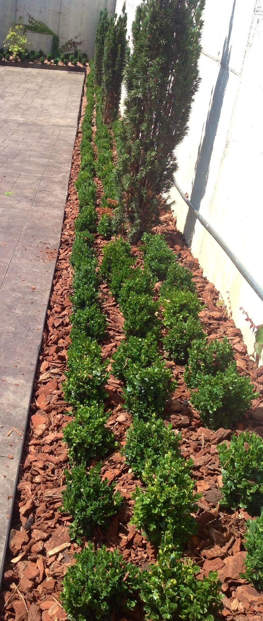 Foto 21 de Jardines (diseño y mantenimiento) en Durango | Jardines Patxi Lorategiak