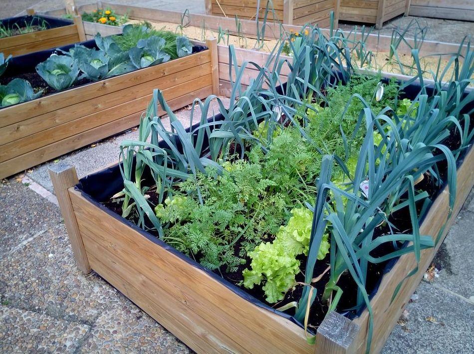 Foto 7 de Jardines (diseño y mantenimiento) en Durango | Jardines Patxi Lorategiak
