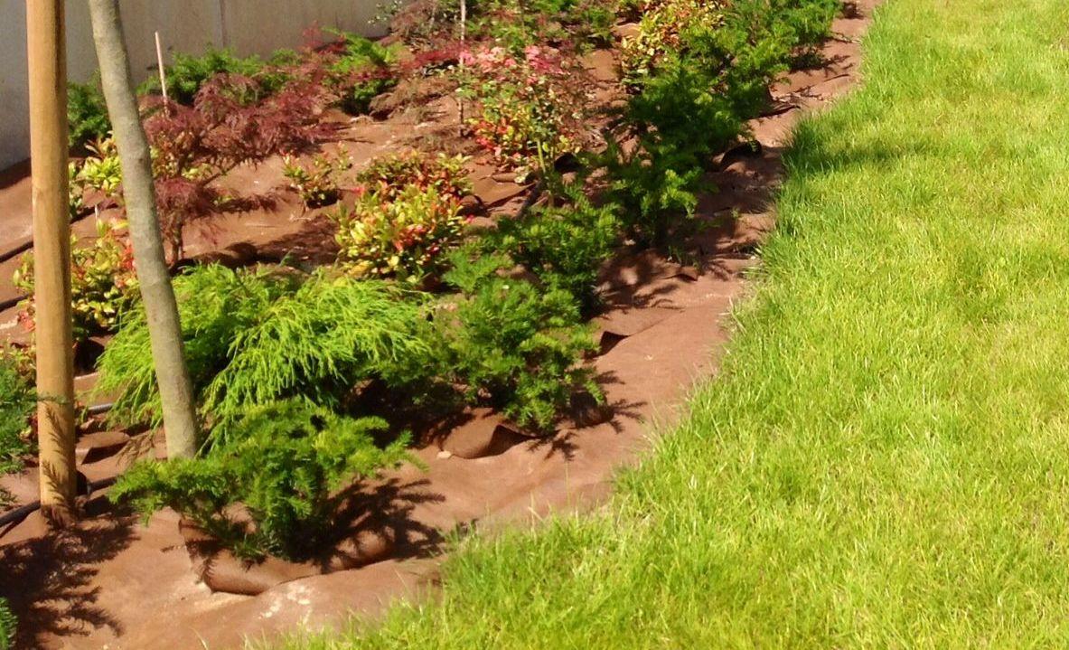 Foto 11 de Jardines (diseño y mantenimiento) en Durango | Jardines Patxi Lorategiak