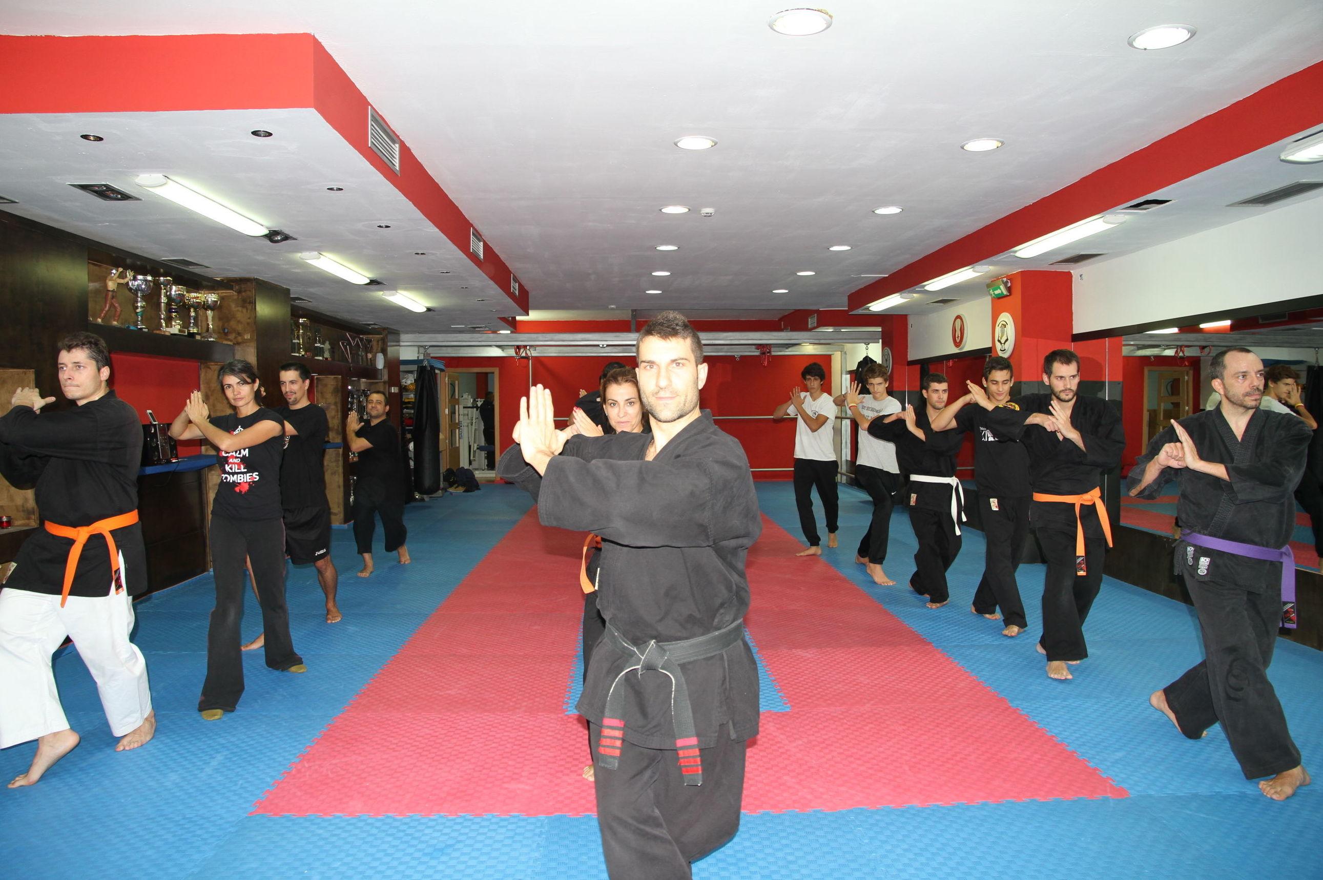 Bienvenido a la Escuela de Kenpo Ángel Ruiz, tu gimnasio de artes marciales en las Rozas.