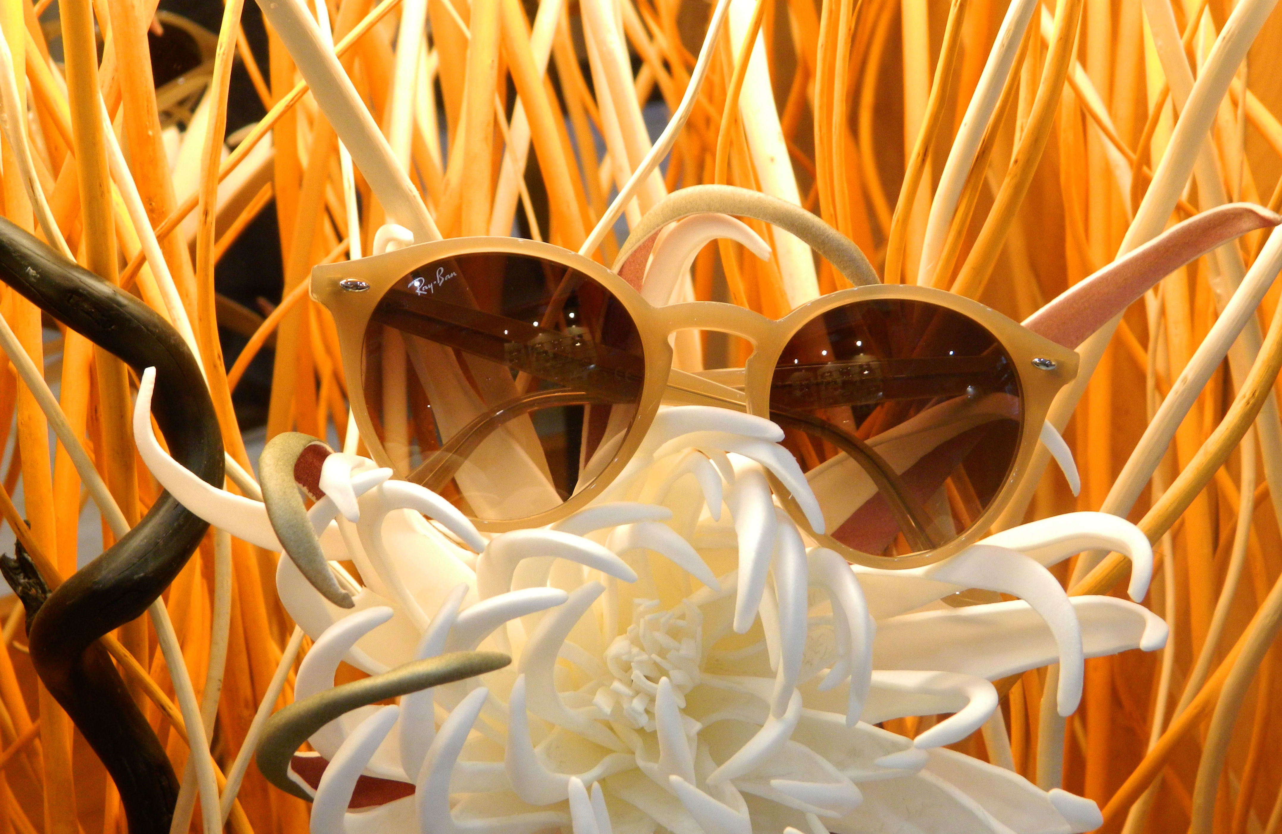 gafas de sol en Burriana